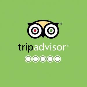 Сертификат качества TripAdvisor